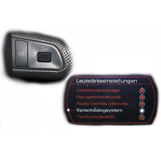 SDS Speech Dialog System - Retrofit for Audi A6 4F, 199,00 €